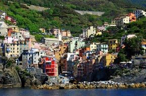 Houses near the water in Cinque Terre in Italy