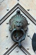 bronze door knocker in the shape of a lion