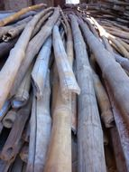 bamboo rods on a heap