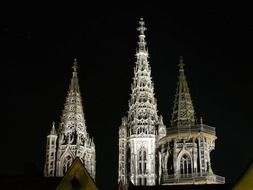 Ulm Cathedral against the night sky