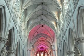 church vaults  st rombouts cathedral