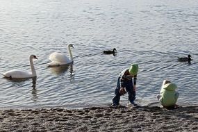 Picture of the swans and children
