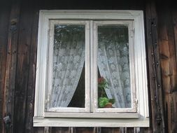 white curtains on a wooden window