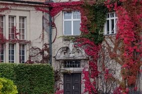 Burgher's House In Autumn