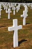 Cemetery with white crosses in america
