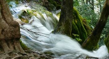 picture of the waterfall in a forest in Croatia