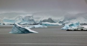 scenic blue icebergs on grey water, antarctica