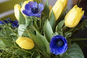 Spring bouquet of yellow tulips and blue flowers