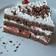 A slice of German Black Forest cake