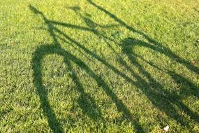 shadow of a bike on a meadow