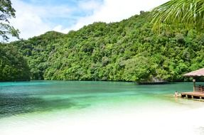 tropical palau beach