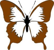 painted brown butterfly