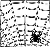 Black and white picture of a spider on a web
