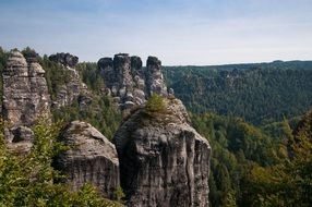 Rock wall in Saxon Switzerland