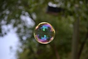 colorful soap bubble in the air