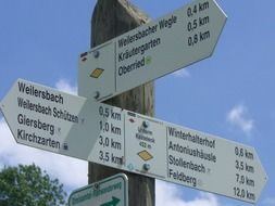 tourist signpost in the forest