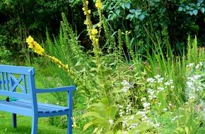 A garden bench stands on near the flowers