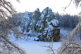 Teutoburg forest in winter