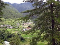 village at forested mountain valley, bhutan