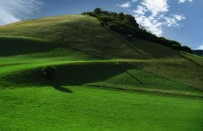 meadows with green grass on the mountain