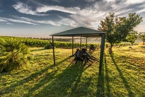 tent for relaxing on a green field in Tuscany