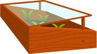 seedlings in wooden box greenhouse, drawing