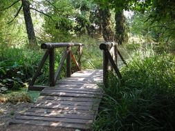 wooden bridge over a stream in the forest