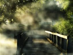 wooden bridge on a foggy day in the forest