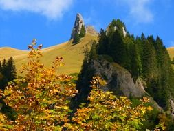 forested mountains, colorful autumn landscape