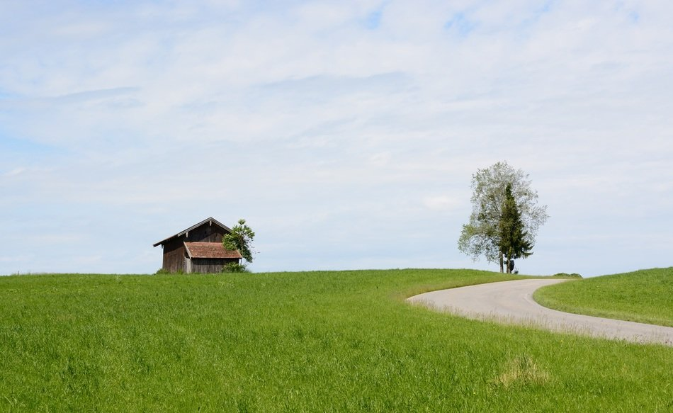 barn on a green meadow
