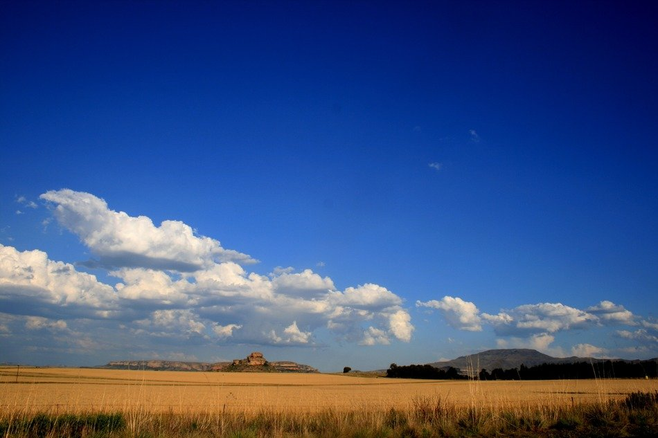 white clouds over the yellow ochre fields on a sunny day