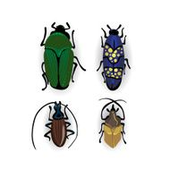 Colorful vector drawing of small beetles