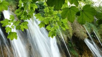 waterfall of the Plitvice lakes in close-up