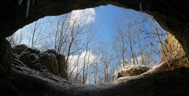 view from the cave to the trees
