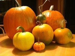 pumpkins of different sizes for halloween