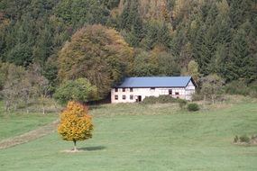 panoramic view of a farm amid scenic nature at eifel