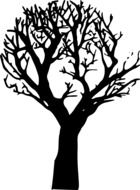 black silhouette of a tree with branches on a white background