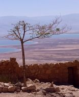 remote view of the dead sea in israel