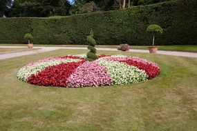 beautiful flower bed in a park