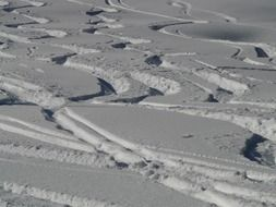 traces of skis in deep snow