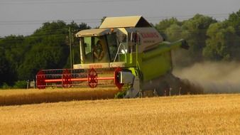 combine harvester on the agricultural field