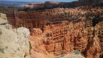 Landscape of wilderness in bryce canyon