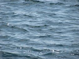 waves on water surface