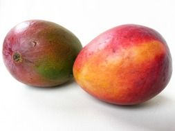 exotic tropical fresh mango fruit