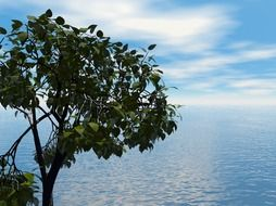 young green tree by the ocean