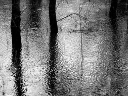Black and white photos of puddles in rainy weather