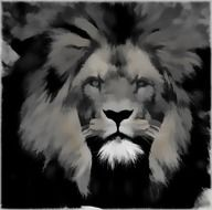 lion head, black and white, digital art