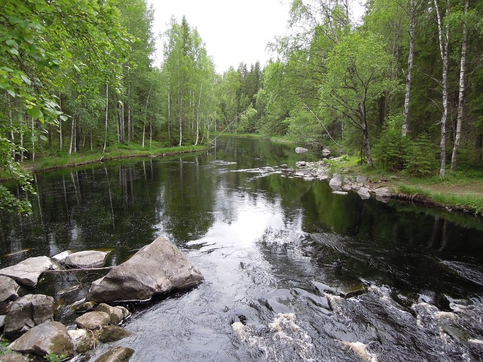 picturesque landscape of Eastern Finland