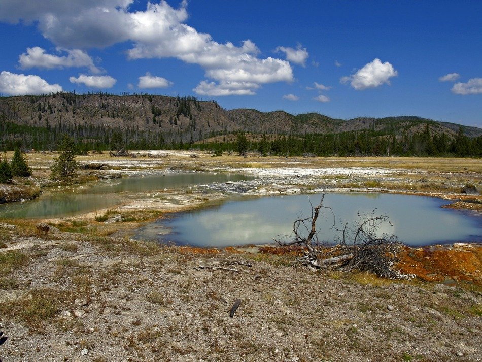 landscape in Yellowstone National Park, Wyoming, on a sunny day