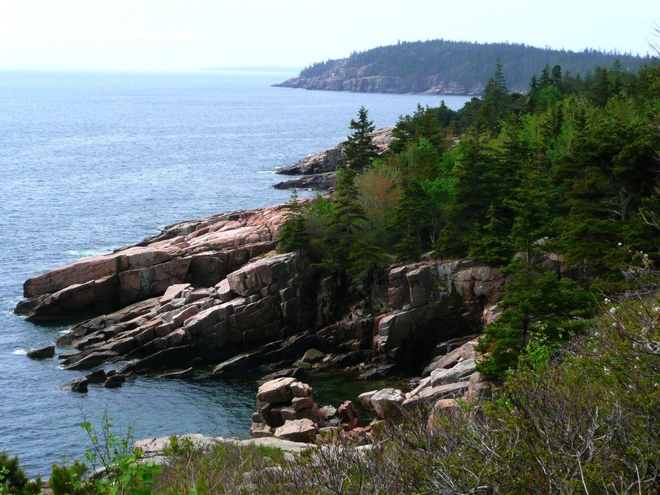 landscape of the national park in Acadia on a sunny day